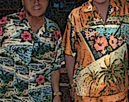 aloha shirts alt